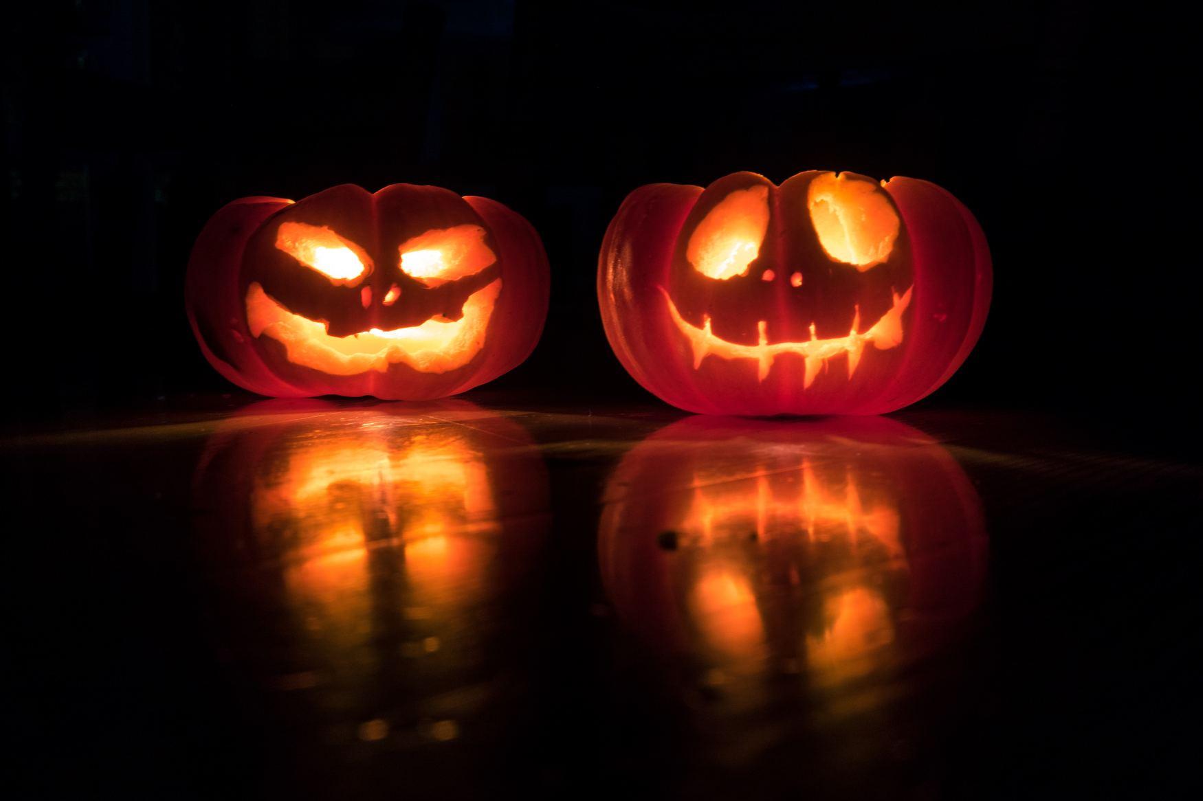 halloween, pumpkin patch, crockford bridge farm, addlestone, west byfleet, weybridge, surrey, family, half-term